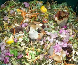 Küchenabfälle, Baum- und Strauchschnitt und Pflanzenreste im Thermokomposter